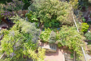 Shared lush garden